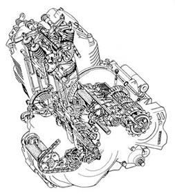 Eclaté de moteur de Suzuki 800 DR
