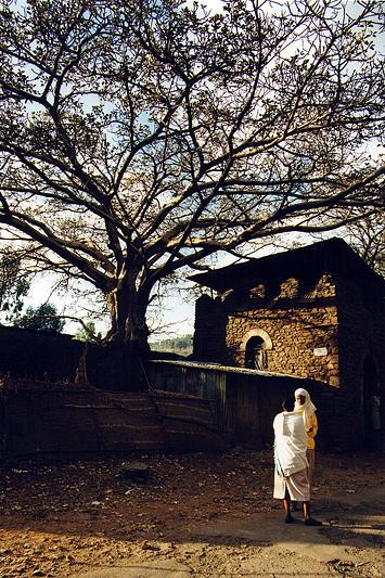 Scène de rue, Gondar - Ethiopie, février 2000