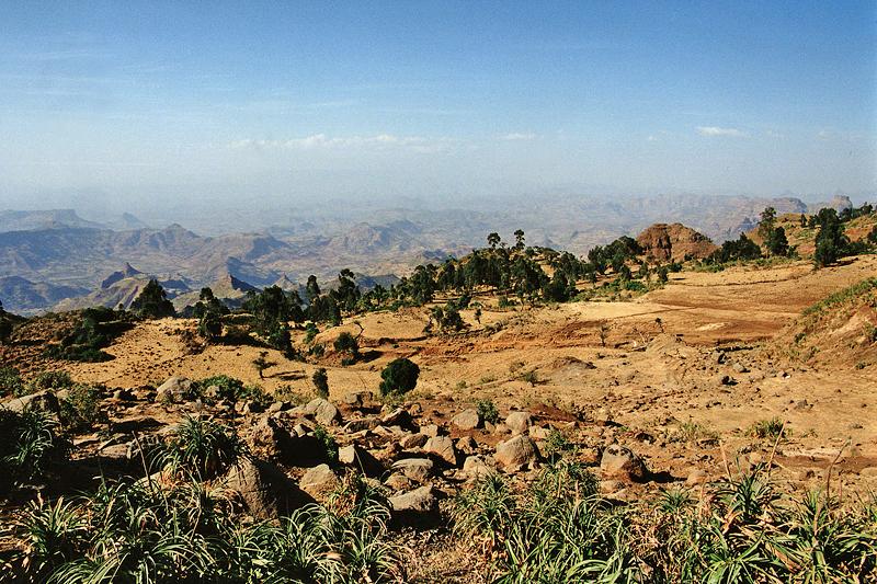 Premiers paysages d'Ethiopie, février 2000