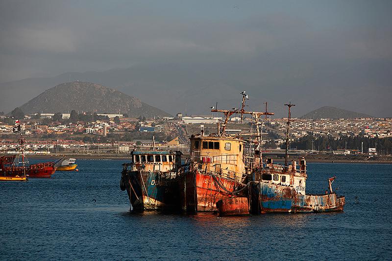 Bateaux de pêche au mouillage, port de Coquimbo, Chili - 2014