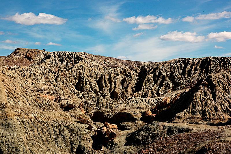Paysage caractéristique du Bosque Petrificado, Sarmiento, Argentine - 2014
