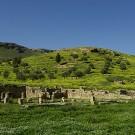 Le site archéologique de Bulla Reggia - Tunisie 2009