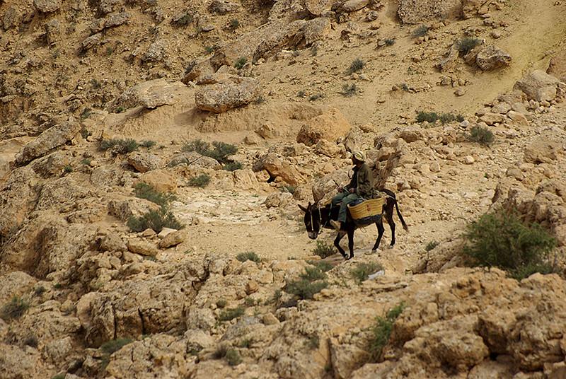 Un villageois aux environs de Chenini - Tunisie 2009