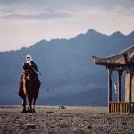 Chameau de Bactriane à Jiayugan