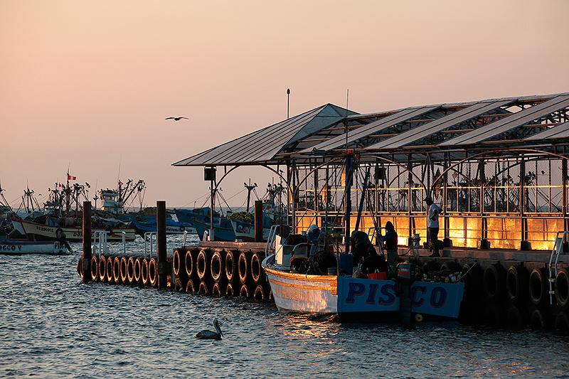 Le port de pêche de Paracas, Pérou - 2014