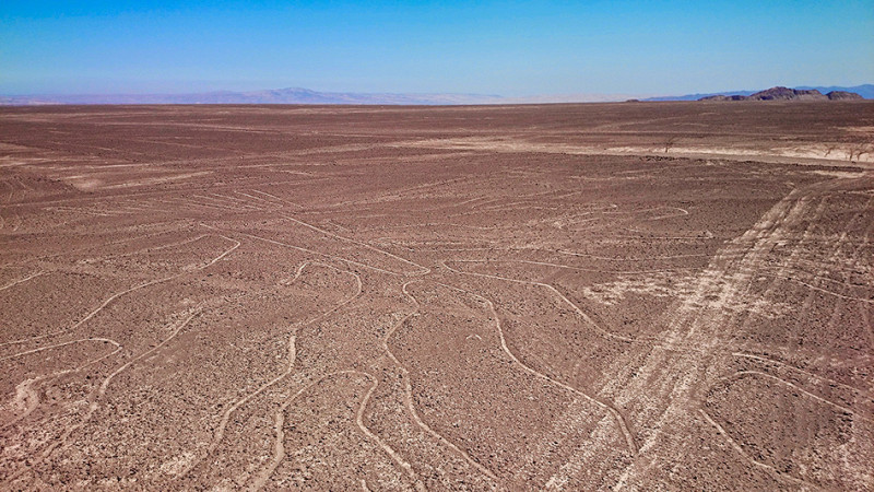 L'arbre, lignes de Nazca, Pérou - 2014