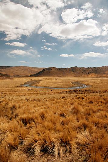 Paysage de l'altiplano, Pérou - 2014