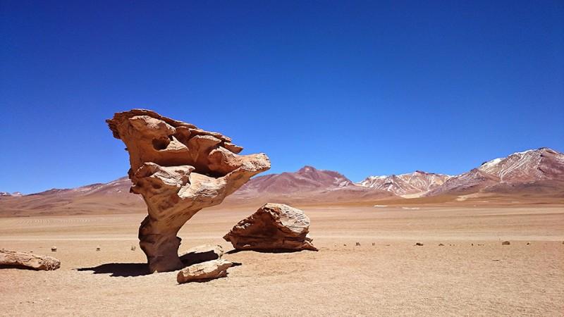 El arbol de piedra, Sud Lipez, Bolivie - 2014
