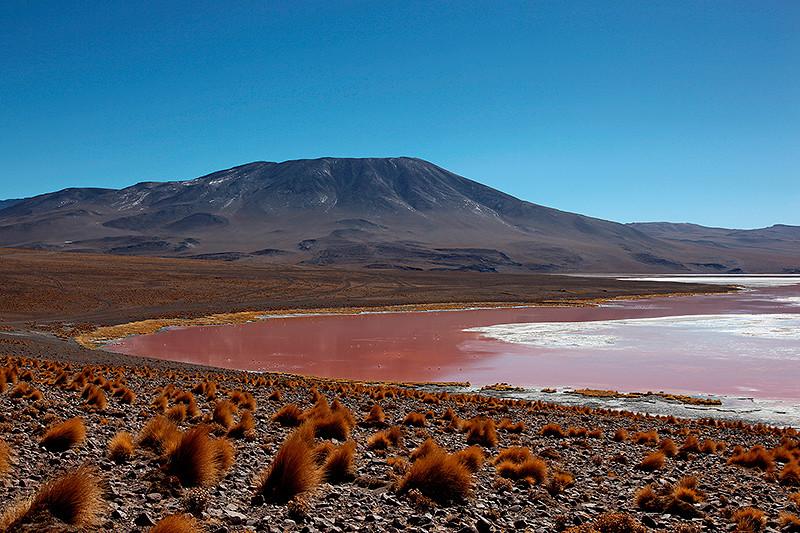 La laguna colorada, Sud Lipez, Bolivie - 2014
