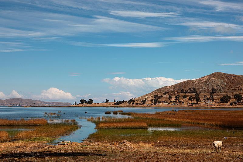 Les couleurs du lac Titicaca, Bolivie - 2014