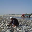 Chacun sa technique, certains préfèrent explorer soigneusement une parcelle de terrain - Hotan, Xinjiang, Chine, 2005