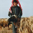 Jeune berger - Al Mayadin, Syrie, 1999