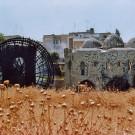 Norias sur le cours de l'Oronte - Hama, Syrie, 1996