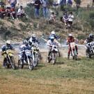 Course sur prairie à Gignac - 1999