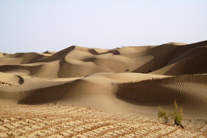 Dunes dans le désert du Taklamakan